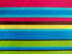 Striped Canvas Fabric