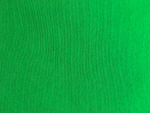 Green Interlock Knit Fabric