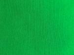 Green Interlock Knit Fabric