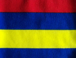 Red/Yellow/Blue Interlock Knit Fabric