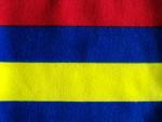 Red/Yellow/Blue Interlock Knit Fabric