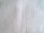 Cream Colored Muslin Fabric