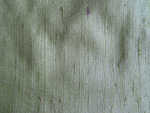 Lime Green Silk Dupioni Fabric